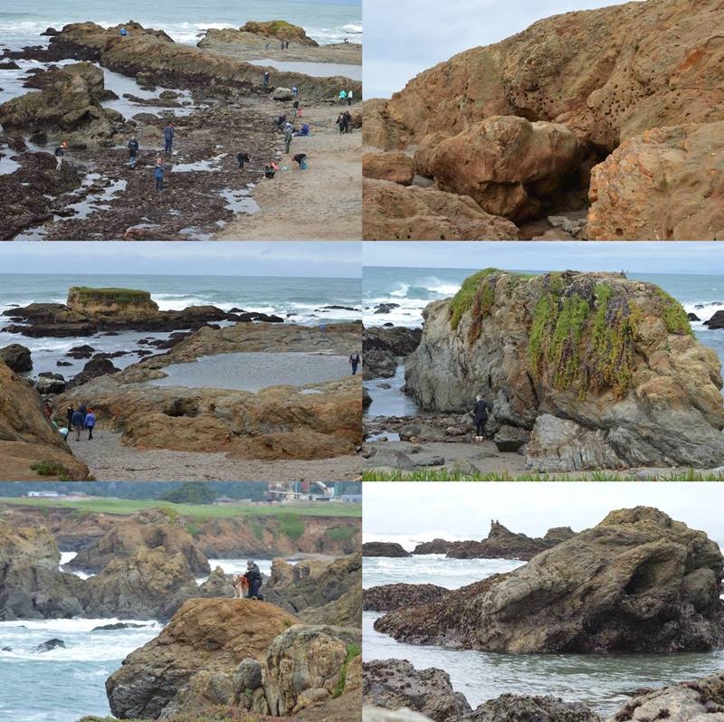 Photos of Glass Beach at Fort Bragg, CA by Sharon Bamber